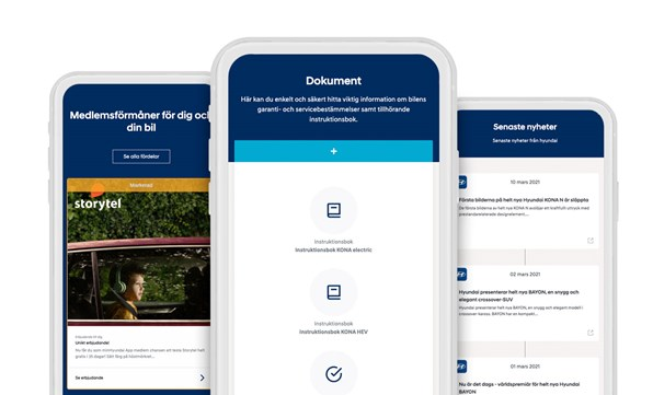 Minhyundai Website 2